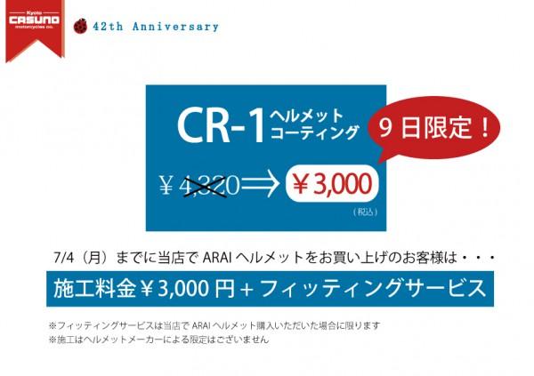 cr-1詳細アップ